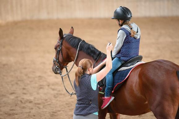 cours équitation pour propriétaire cheval
